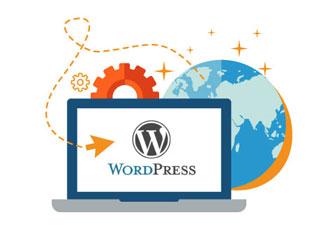 Website Services WordPress Development